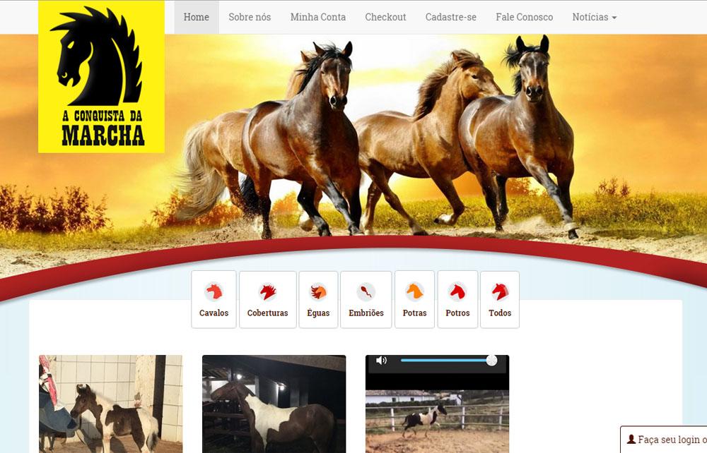 Site Leilão de Cavalos – Salvador