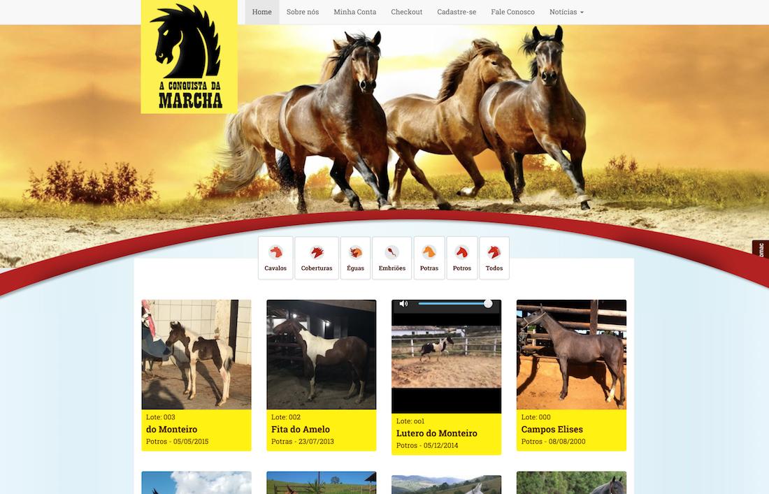 Site Modelo Leilões de Cavalos